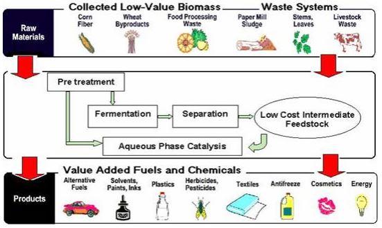 biorefinery biobased plastics bioplastics biopolymers