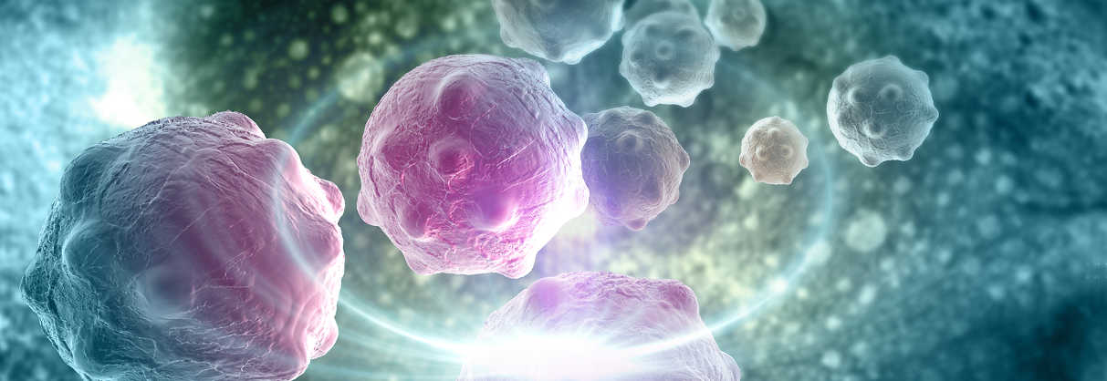 How Did Cancer Cell Therapy Become Reality