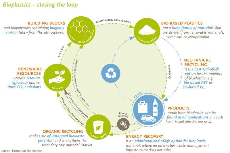 Sustainable and green economy - bioplastics