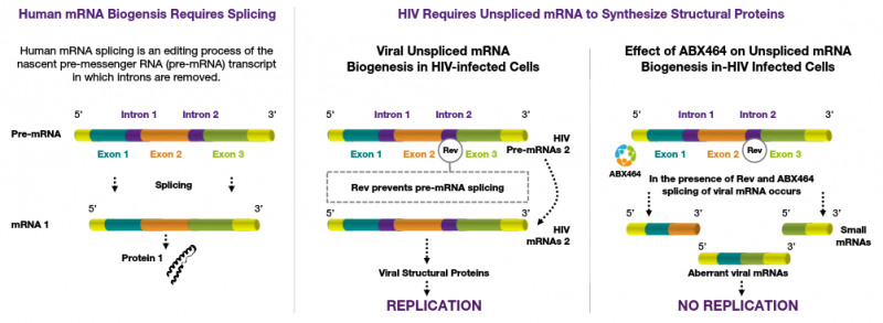 Abivax ABX464 Medical Biotechnology