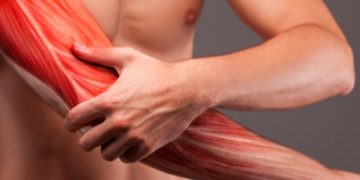 Israeli Cell Therapy for Muscle Injury Will Start Phase III Trial in US