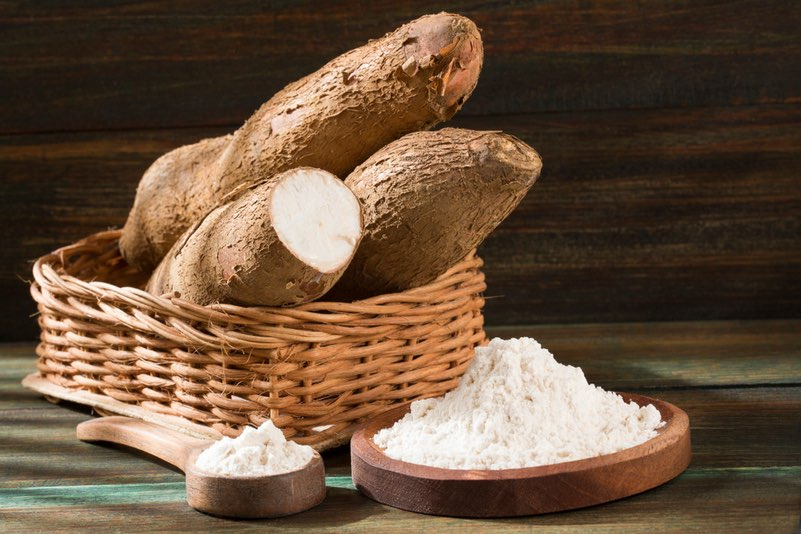 Cassava root and starch - CRISPR editing story