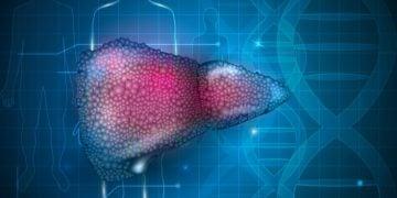 MiNA RNA liver