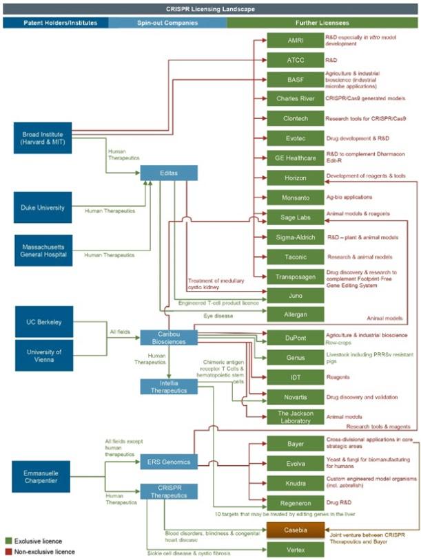 CRISPR patent licensing