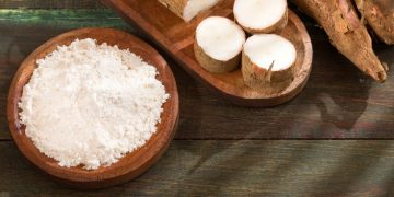 crispr-cas9 cassava crop virus resistance