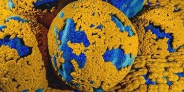 ovarian cancer astrazeneca merck lynparza dna repair