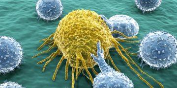 boehringer ingelheim cancer vaccine amal therapeutics